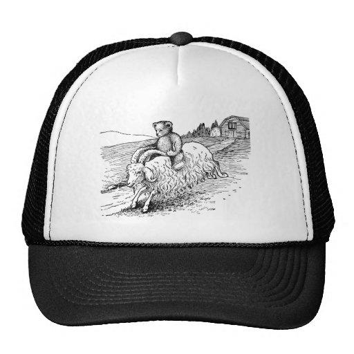 Oso de peluche que monta una cabra gorra