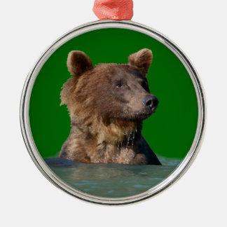 oso del tiempo del baño adorno para reyes