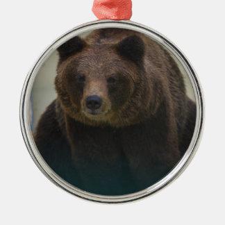 Oso grizzly adorno de cerámica