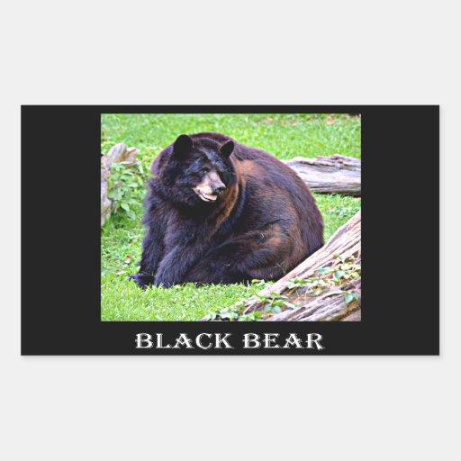 Oso negro rectangular altavoces