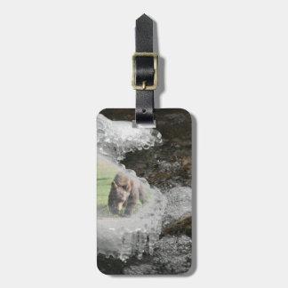 Oso personalizado en el río helado etiquetas para maletas