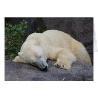 Oso polar el dormir tarjeta pequeña