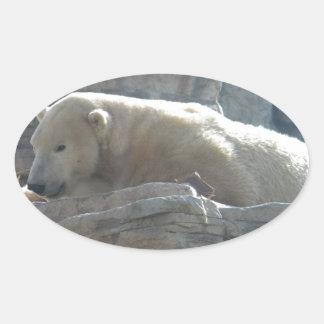 Oso polar pegatinas óval personalizadas