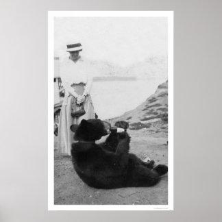 Oso que bebe en Alaska 1910 Posters