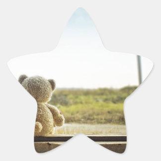 Oso solo pegatina forma de estrella personalizada