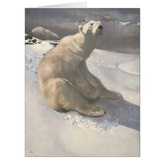 Osos polares 1900 felicitacion