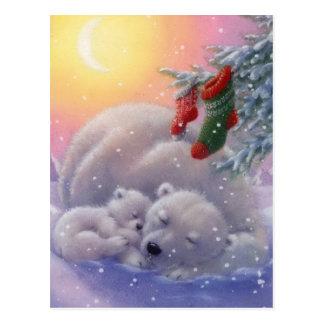 Osos polares del navidad el dormir postal