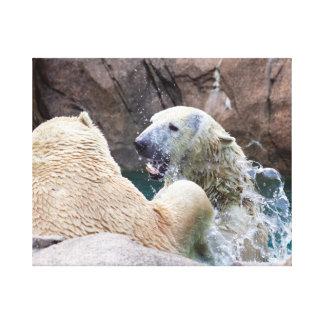 Osos polares Roughhousing en la impresión de la