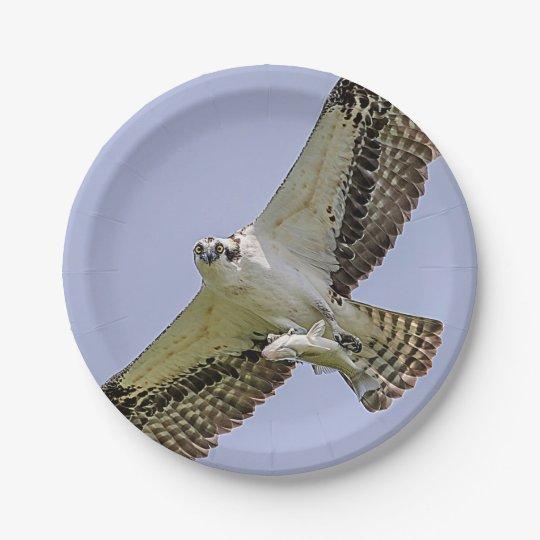 Osprey con un pescado plato de papel