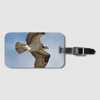 Osprey en vuelo etiqueta para maletas