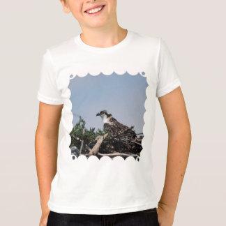 Osprey que se sienta en la camiseta de la juventud