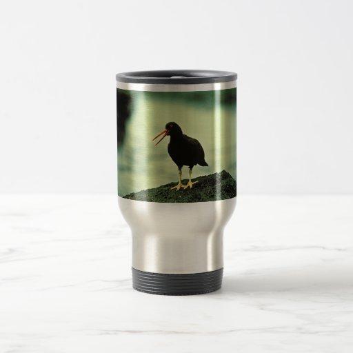 Ostrero negro tazas de café