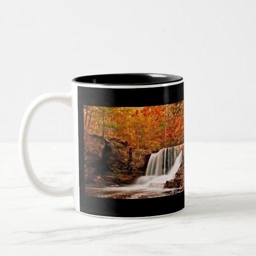 Otoño en las caídas de la fábrica tazas de café