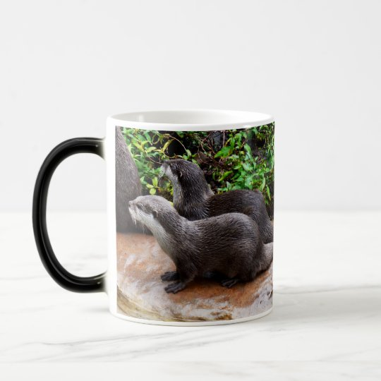 Otterly a lindo, nutria, magia Morph la taza