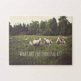 Ovejas blancas y corderos mullidos lindos en foto puzzle