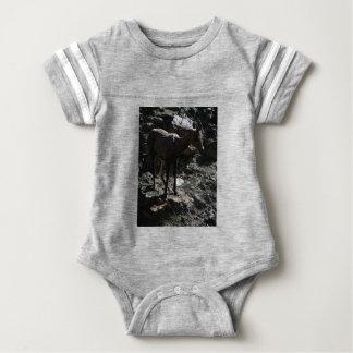 Ovejas de Bighorn de la montaña rocosa, oveja Body Para Bebé