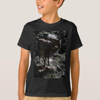 Ovejas de Bighorn de la montaña rocosa, oveja Camiseta