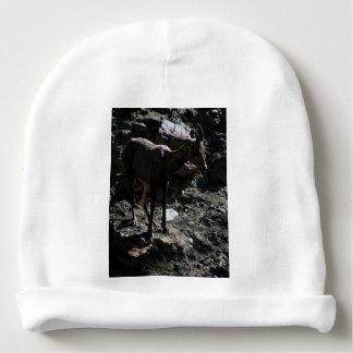 Ovejas de Bighorn de la montaña rocosa, oveja Gorrito Para Bebe