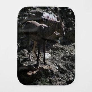 Ovejas de Bighorn de la montaña rocosa, oveja Paños Para Bebé