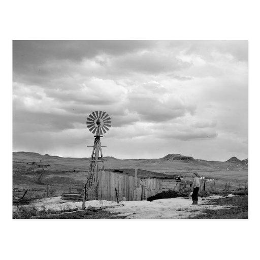 Ovejas Ranch, 1942 de Montana Postal