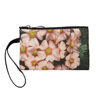 Oxalis, flores del madera-alazán