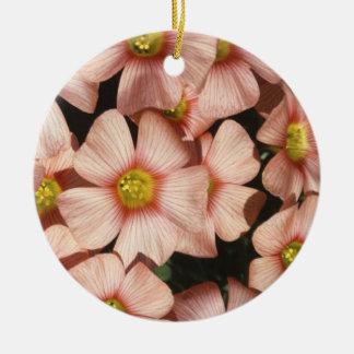 Oxalis, flores del madera-alazán adorno navideño redondo de cerámica