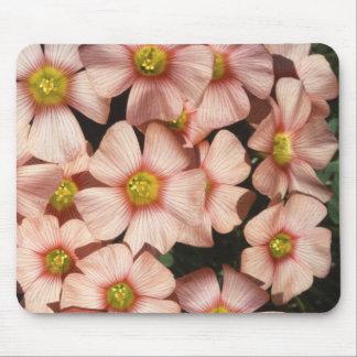 Oxalis, flores del madera-alazán alfombrilla de ratón