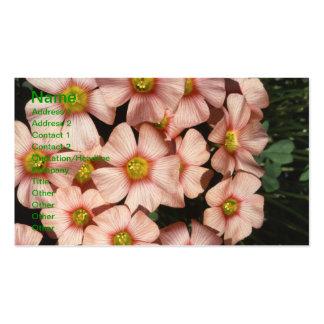 Oxalis, flores del madera-alazán tarjetas de visita