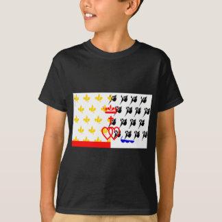 Pagar-de-la-Loira-Bandera Camiseta