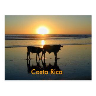 País de la vaca de Bejuco de la postal, Costa Rica Postal