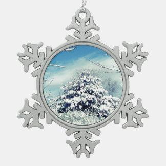 País de las maravillas del invierno adorno