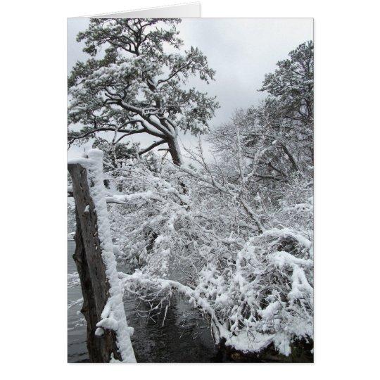 País de las maravillas II del invierno Tarjeta De Felicitación