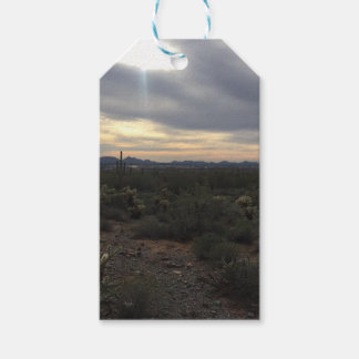 Paisaje de Arizona Etiquetas Para Regalos
