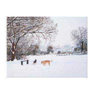 paisaje de la escena de la nieve con los árboles y