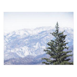 Paisaje de la montaña con la postal del pino el |