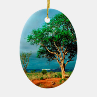 Paisaje del africano del árbol ornamentos de navidad