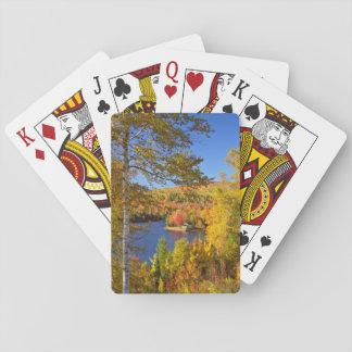 Paisaje del árbol del otoño, Maine Barajas De Cartas