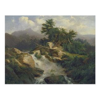Paisaje del bosque con la cascada postal