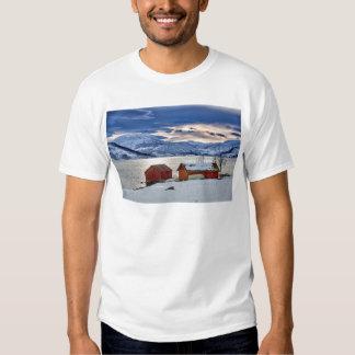paisaje del invierno con la casa roja en la costa camisas