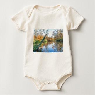 Paisaje del otoño del bosque con la charca body para bebé
