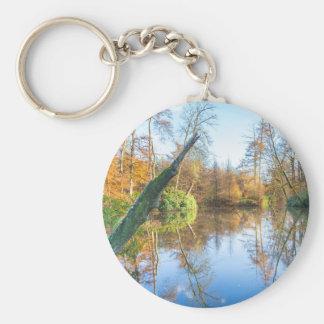 Paisaje del otoño del bosque con la charca llavero
