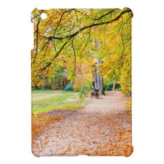 Paisaje holandés del otoño con el sendero y el