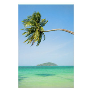 Paisaje tropical póster