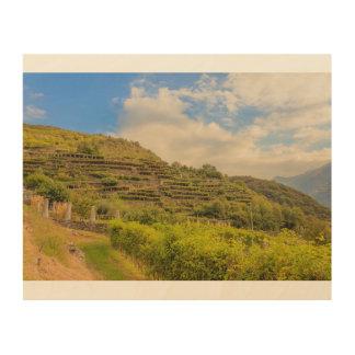 paisaje vitícola del arte de madera de la pared de