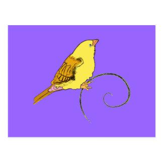 Pájaro amarillo postal