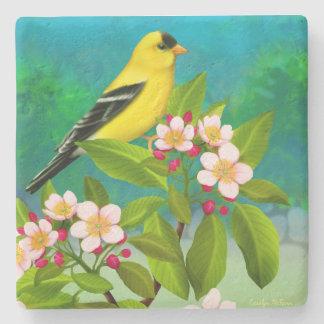 Pájaro americano del Goldfinch en práctico de Posavasos De Piedra