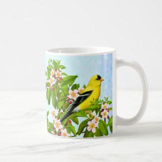 Pájaro americano del Goldfinch en taza del manzano