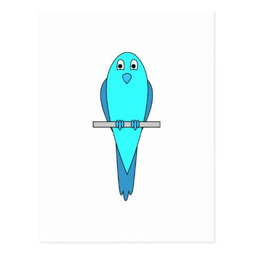 Pájaro azul del Parakeet Postales