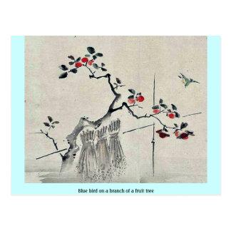 Pájaro azul en una rama de un árbol frutal postal