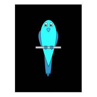 Pájaro azul lindo. Parakeet. Negro Tarjetas Postales